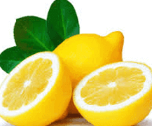 fresh lemon scented bags